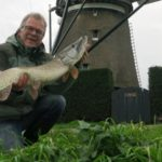 Peter in de polder, week 45